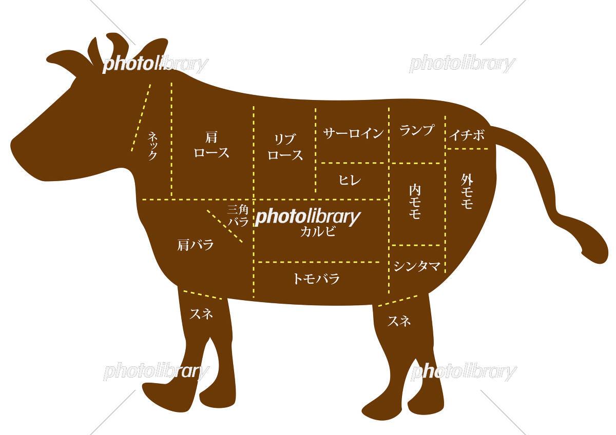 部位 イラスト 牛 牛肉の部位ごとの値段は?特徴や用途を分かりやすく図解で説明します!