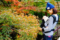 Mom and baby to enjoy the autumn leaves began coloring Stock photo [4594335] early