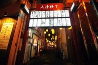 Miyazaki night humanity Alley Stock photo [4595178] Humanity