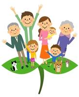 Wakaba family [4658555] Eco
