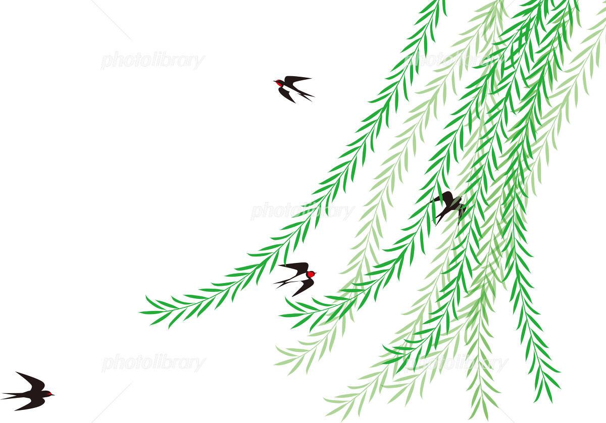 枝垂れ柳とツバメ 日本の初夏の風景 イラスト素材 4724138 フォト