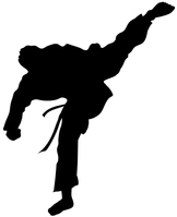 Karate silhouette [4719691] karate