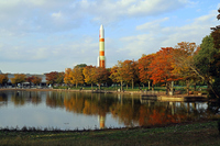 Central Park Tsukuba of autumn leaves Stock photo [4723204] Tsukuba