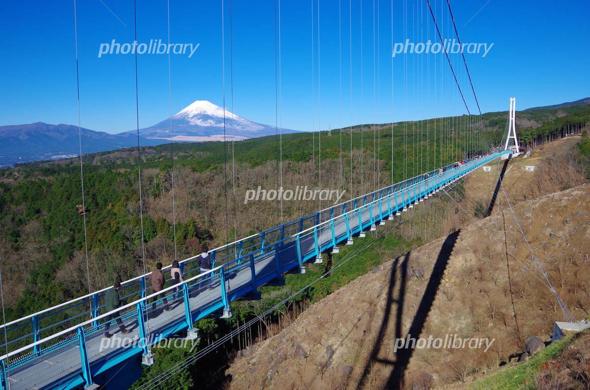 Mishima Sky Walk and Mount Fuji Photo