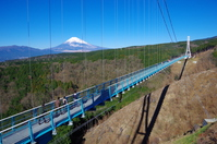 Mishima Sky Walk and Mount Fuji Stock photo [4807208] Mishima