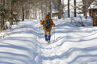 Snow trekking Stock photo [4909131] Sport
