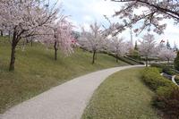 城山公園 散歩道 2