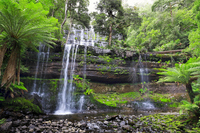 Russell Falls in Tasmania of Mount Field National Park Stock photo [5014528] Mount