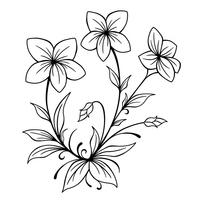 Masamura プロフィール ポートフォリオ 植物のイラストを中心に制作し