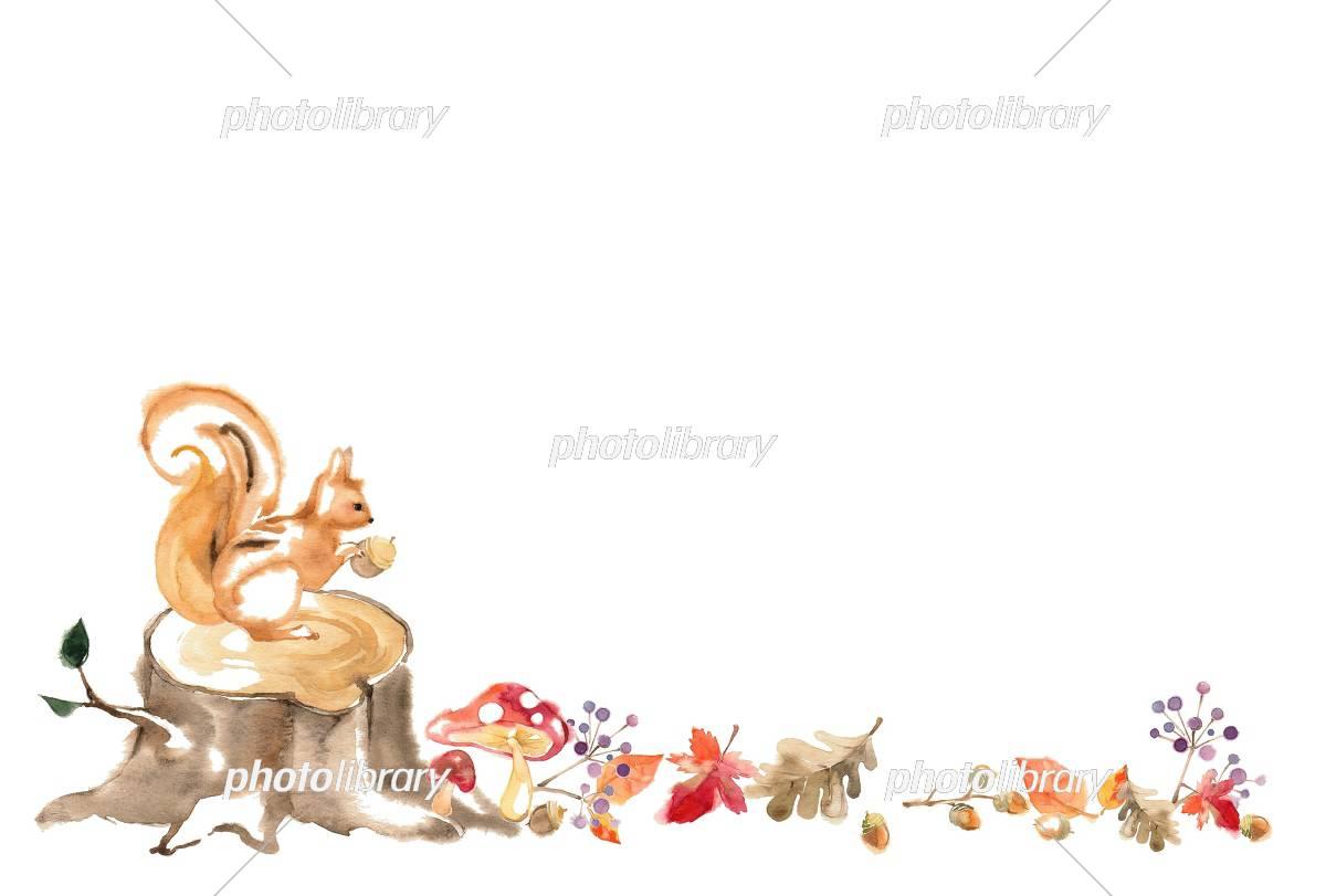 秋の森 カード イラスト素材 [ 5102579 ] - フォトライブラリー