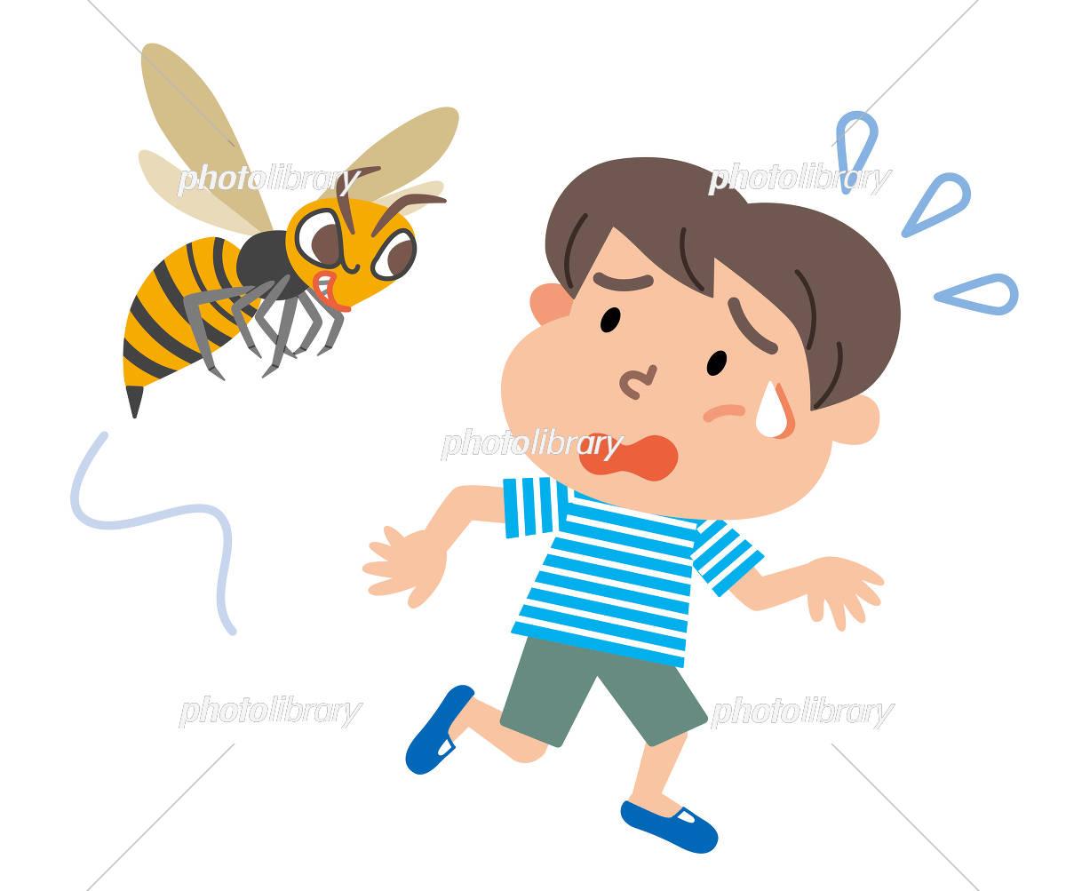 Wasp boy illustration イラスト素材