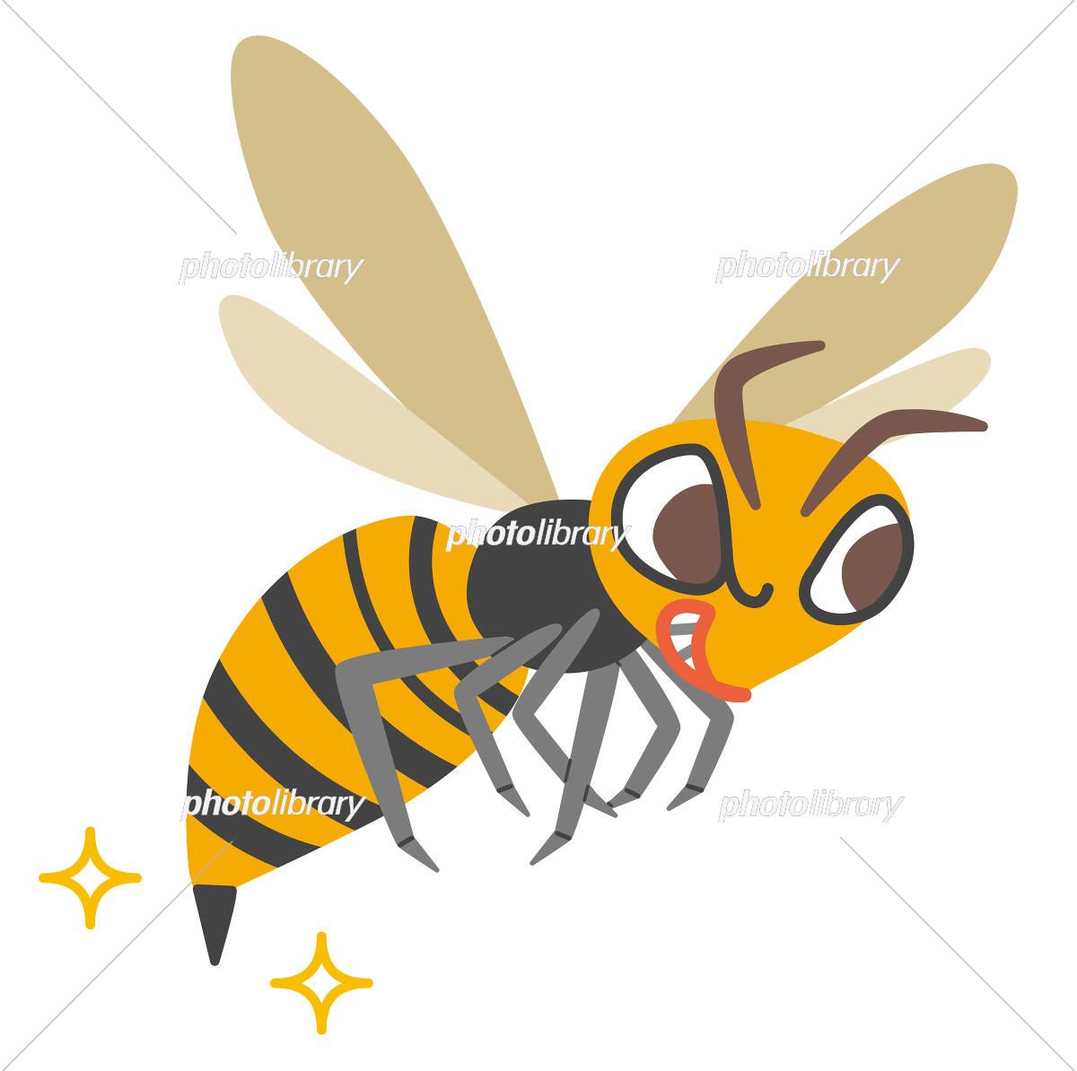 Wasp illustration イラスト素材