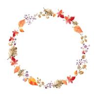 Autumn forest, frame [5102586] An