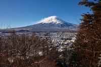 イラスト Mt. Fuji seen from Shinagurayama Asama Park(5112312)