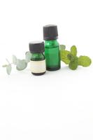 写真 Mint oil and eucalyptus oil and leaves(5115004)