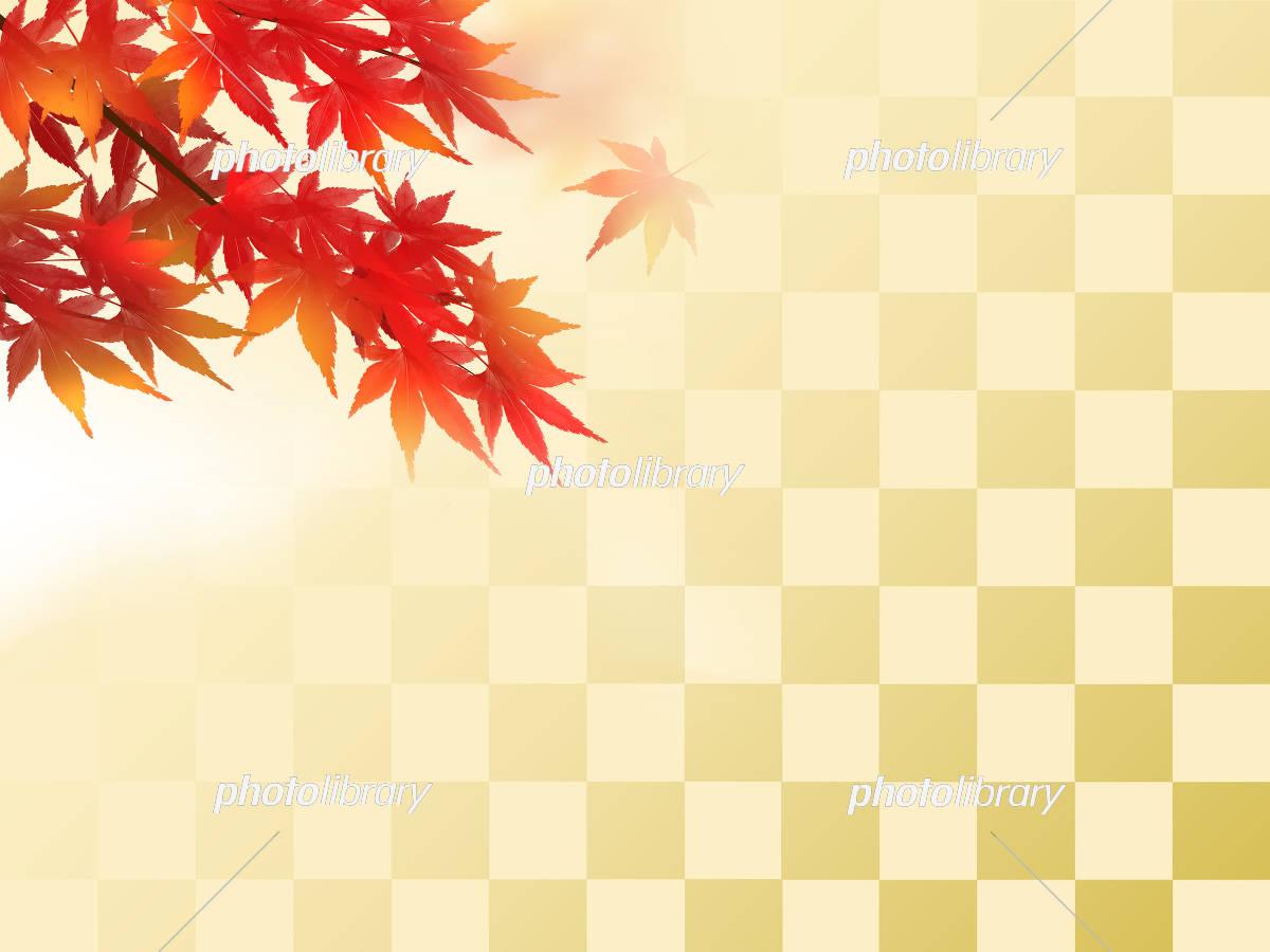 和の背景 紅葉 和柄 和風 イラスト素材 [ 5192534 ] - フォトライブ