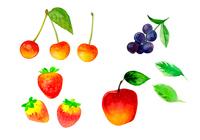 イラスト Cherry strawberry apple sweet potato watercolor(5201295)
