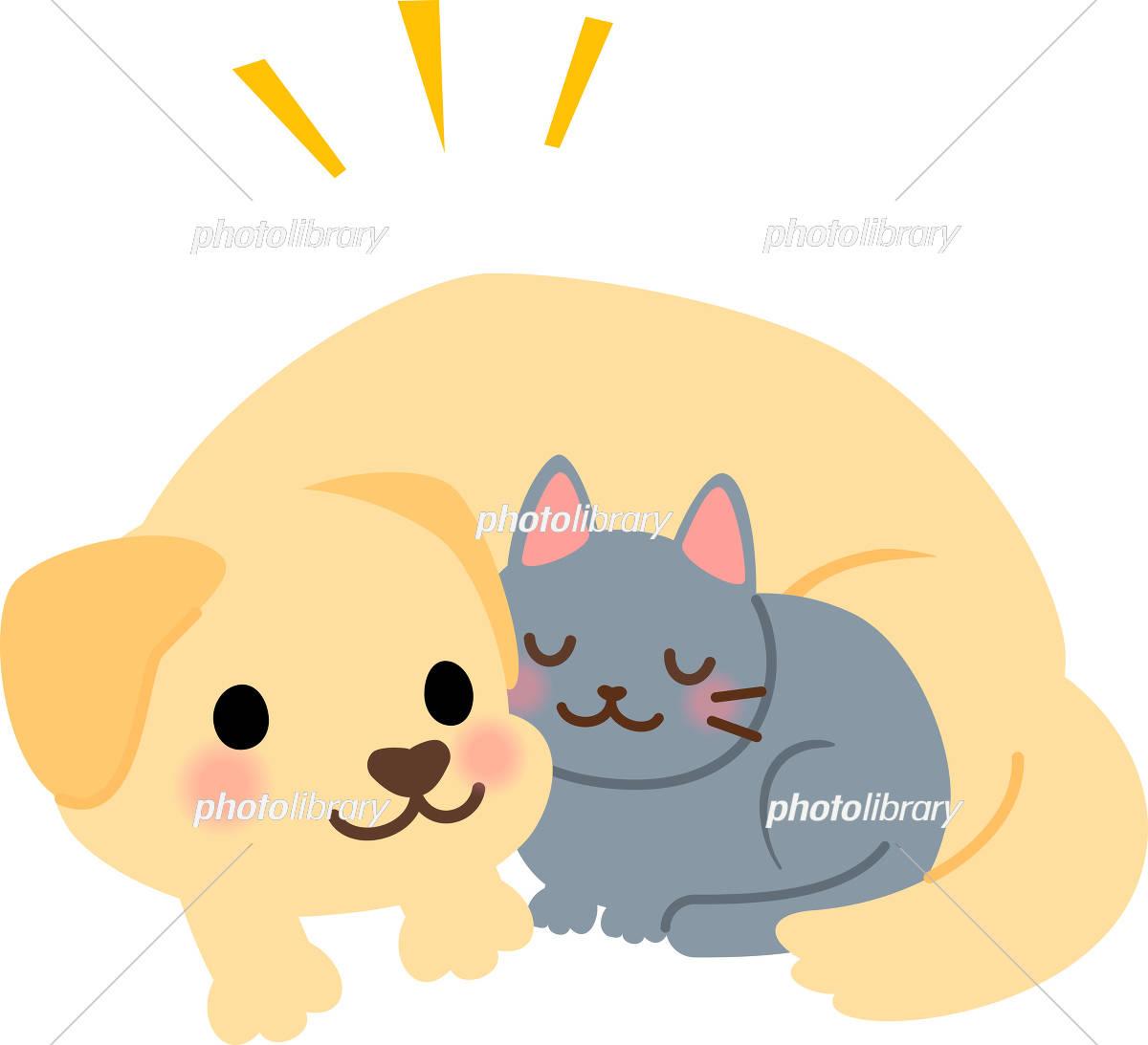 一緒に寝転ぶ犬と猫 イラスト素材 5290658 フォトライブラリー