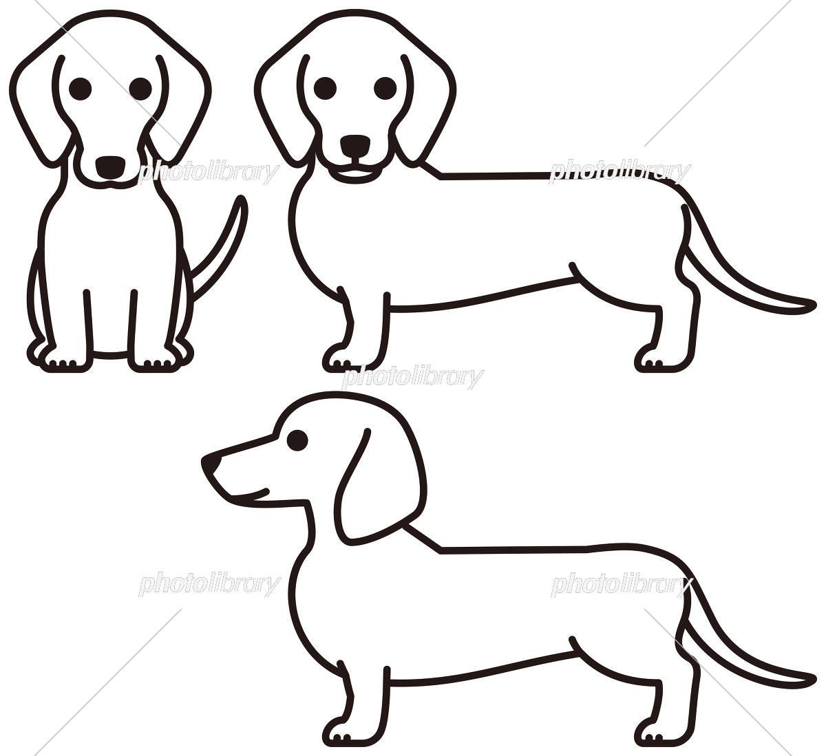 ダックスフンド 犬 イラスト素材 5294013 フォトライブラリー