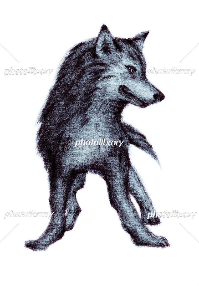 オオカミ イラスト素材 5385344 フォトライブラリー Photolibrary
