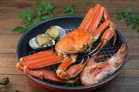 写真 Assorted seafood(5436453)