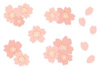 イラスト Sakura illustration(5437095)