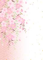 イラスト A branched cherry tree willow(5437210)