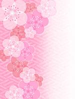 イラスト Plum blossom background(5438495)