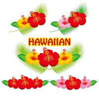 イラスト Hibiscus illustration(5438512)