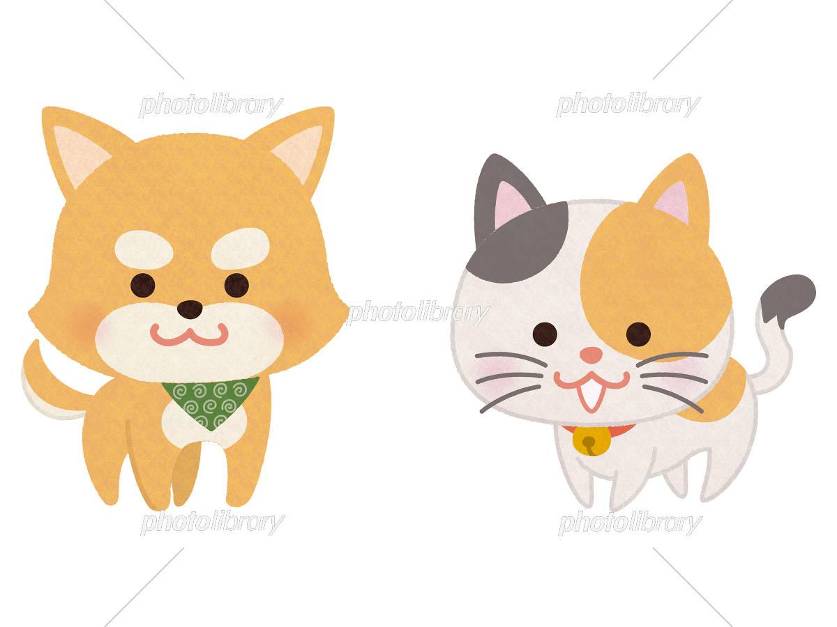 お利口なペットの犬と猫 イラスト素材 5469839 フォトライブラリー