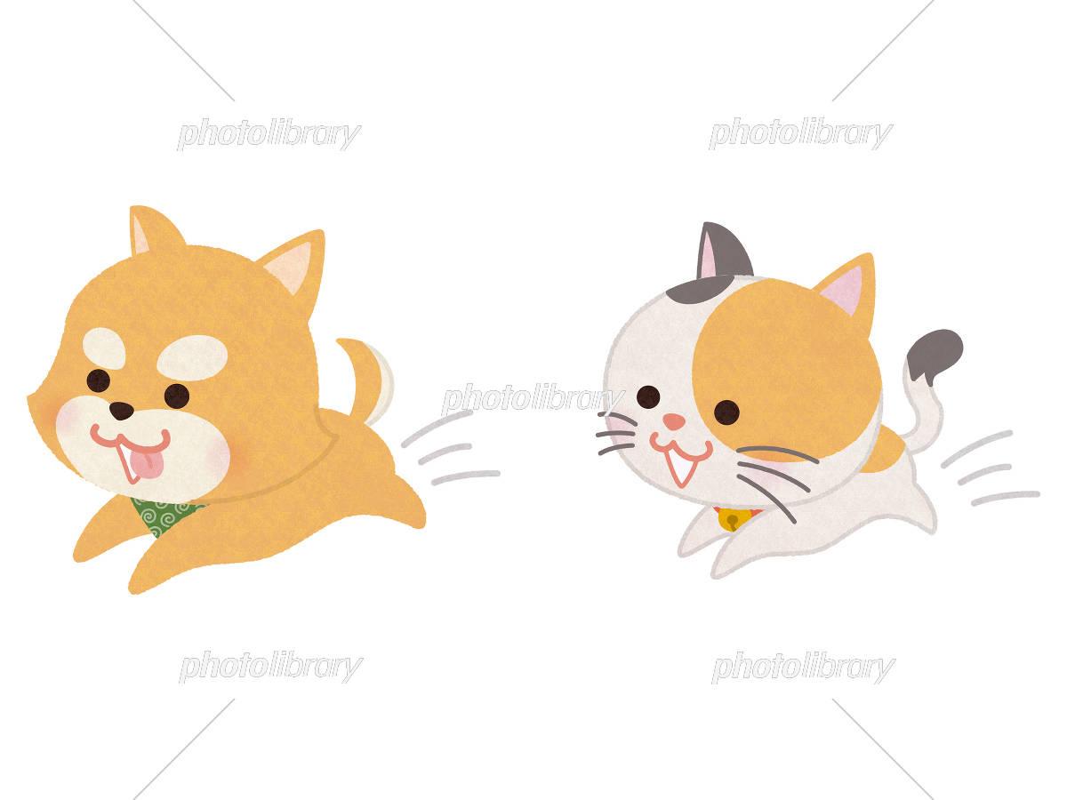 走り回るペットの犬と猫 イラスト素材 5469841 フォトライブラリー