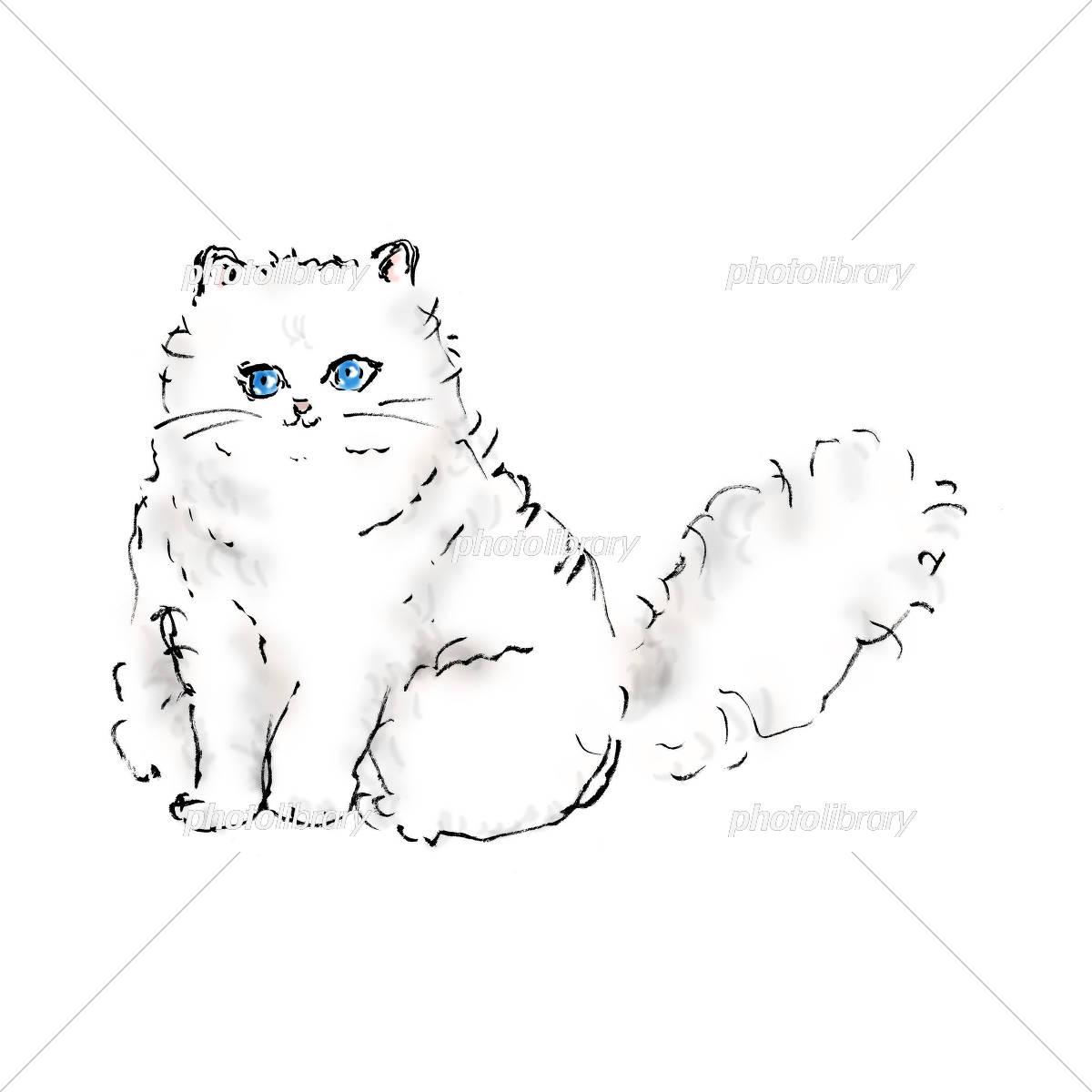 ペルシャ猫 イラスト素材 [ 5471328 ] , フォトライブラリー