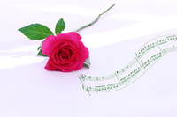 写真 Synthesis of red roses and musical score of one wheel(5470317)