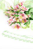 写真 Composition of Alstroemeria and music score(5470331)