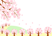 イラスト Spring landscape of rape flowers and cherry blossoms(5471553)