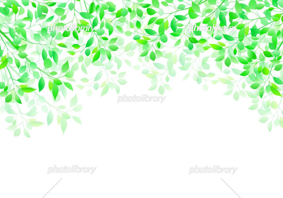 新緑 透過イメージ 背景 イラスト素材 [ 5544173 ] - フォトライブラリー