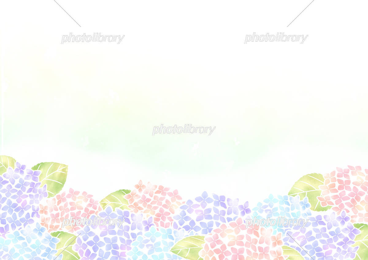 アジサイ壁紙 イラスト素材 5575295 フォトライブラリー