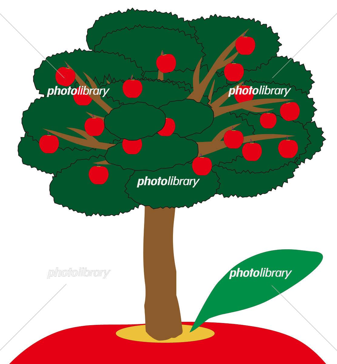 りんごの樹 イラスト素材 5577729 フォトライブラリー Photolibrary