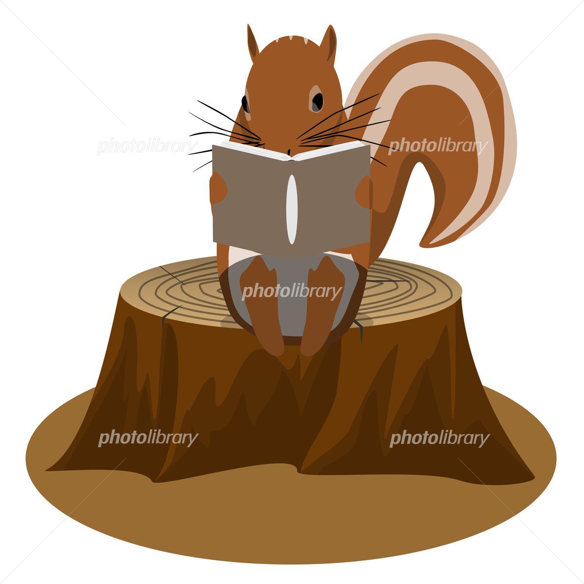 本を読むリス イラスト素材 [ 5615848 ] 無料素材- フォトライブラリー