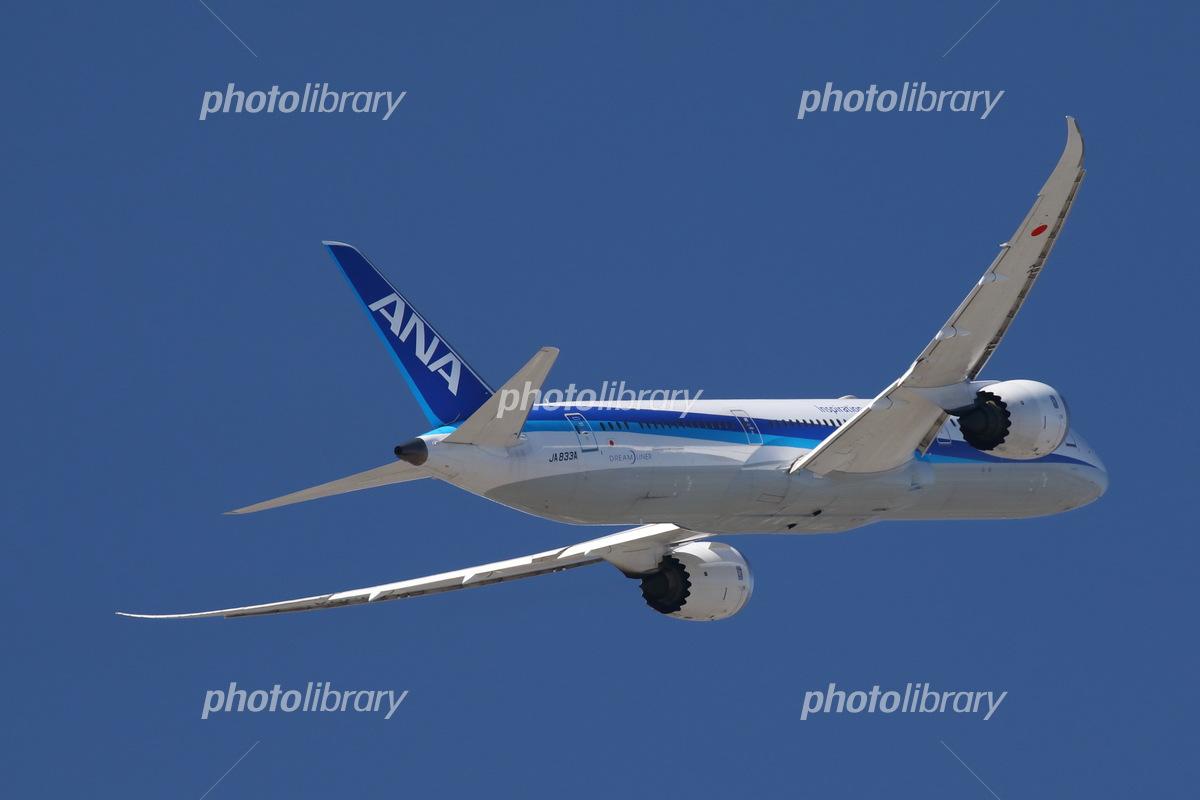 飛行機 旅客機 Ana 航空機 87 ボーイング787 写真素材 フォトライブラリー Photolibrary