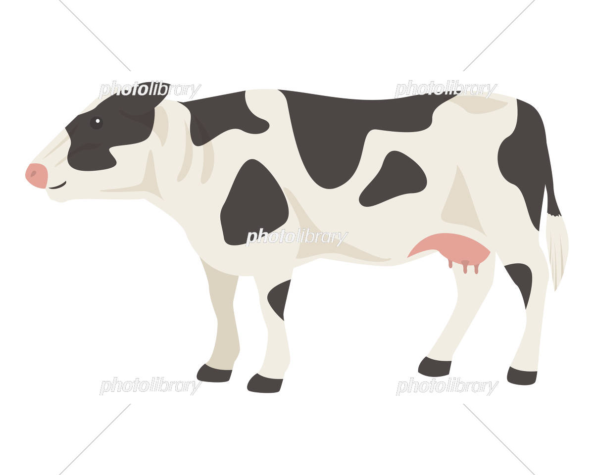 ホルスタイン 乳牛 イラスト素材 5868188 フォトライブラリー