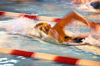 Panning swimming crawl Stock photo [226995] Sport