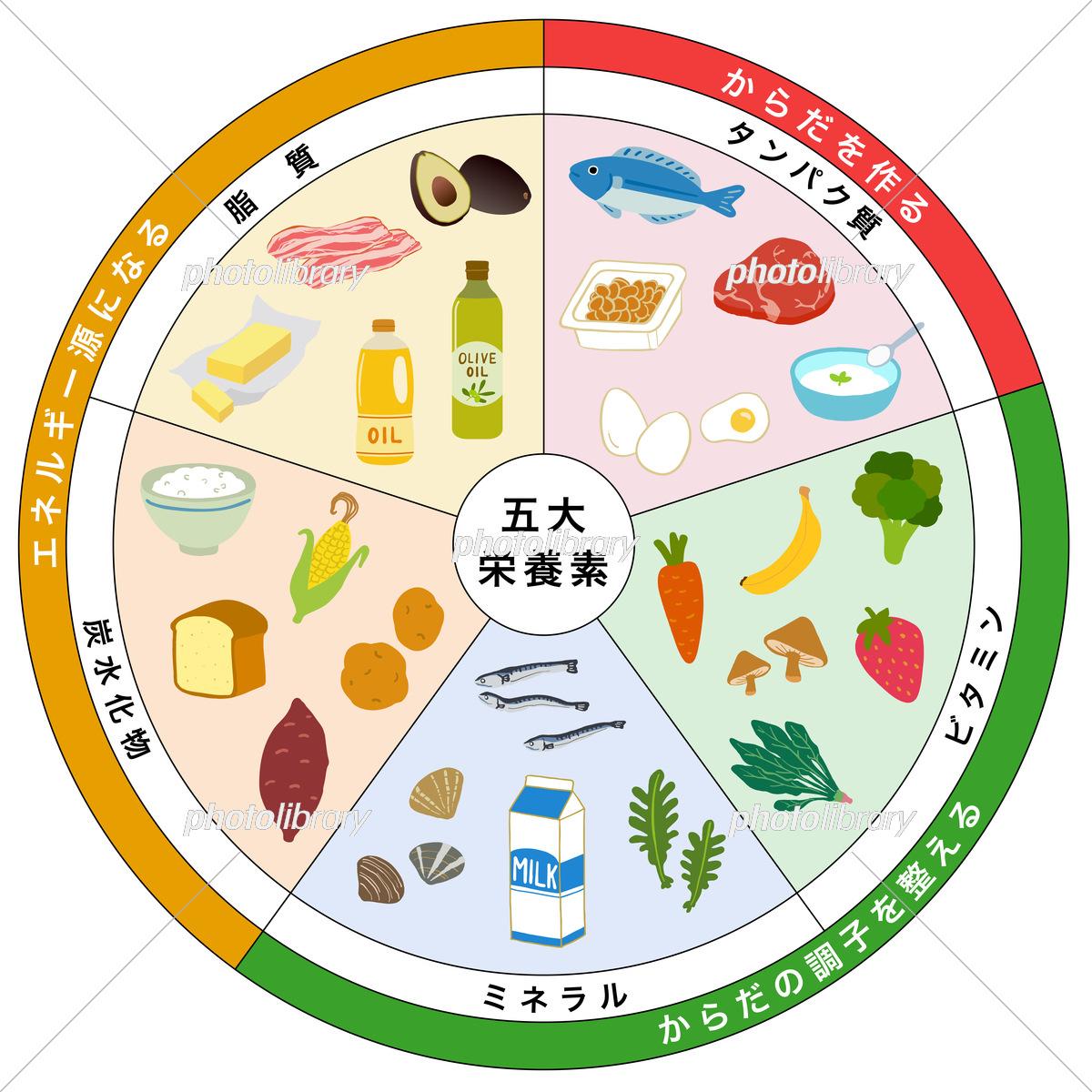 五大 栄養素
