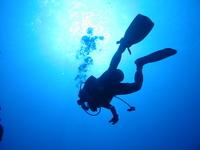 Diver Stock photo [420949] Diver