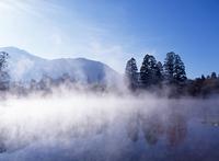 Winter of gold scales Lake Stock photo [432050] Oita