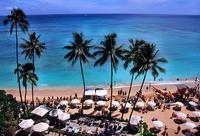 Waikiki landscape Stock photo [479978] Beach