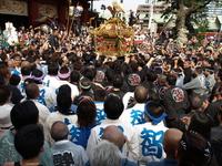 平成21年度 神田祭 2009年