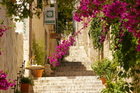 Stone steps and bougainvillea Stock photo [563765] Stone