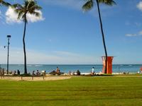 Beach Stock photo [564871] Honolulu