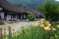 Ouchi inn and German iris Stock photo [566681] Ouchi